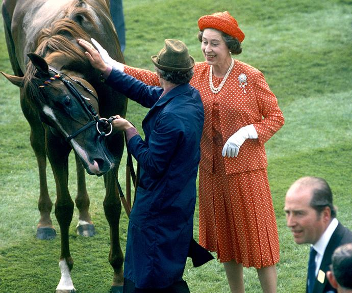Her Royal Highness The Horse Whisperer worked her magic in 1979.