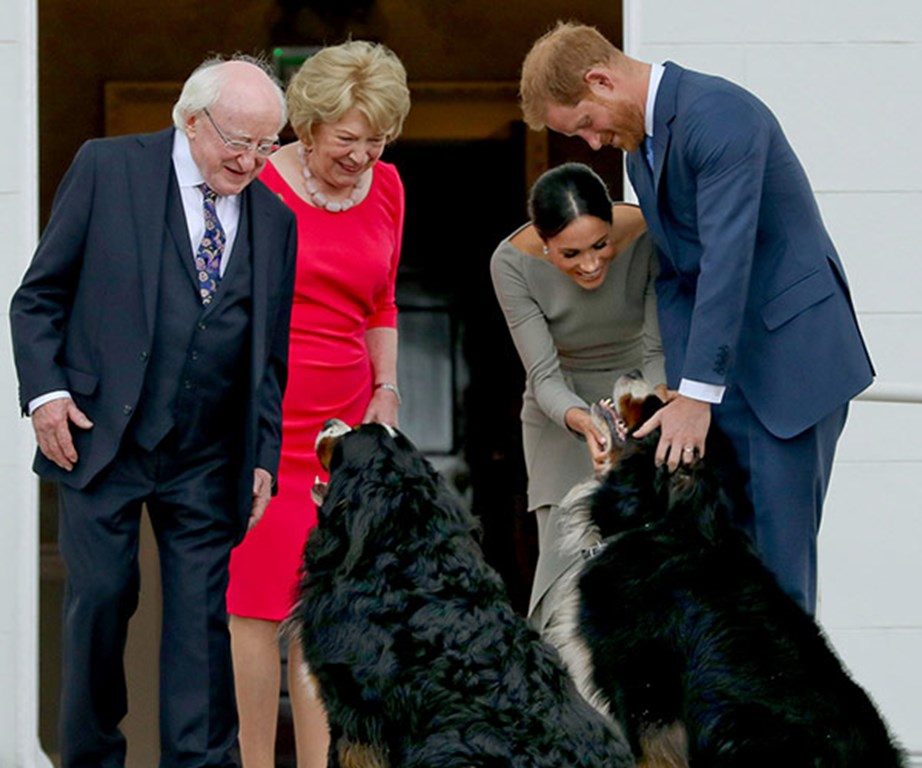 The duo at President Michael Higgins and his wife Sabina's official residence. Who's a good boy?