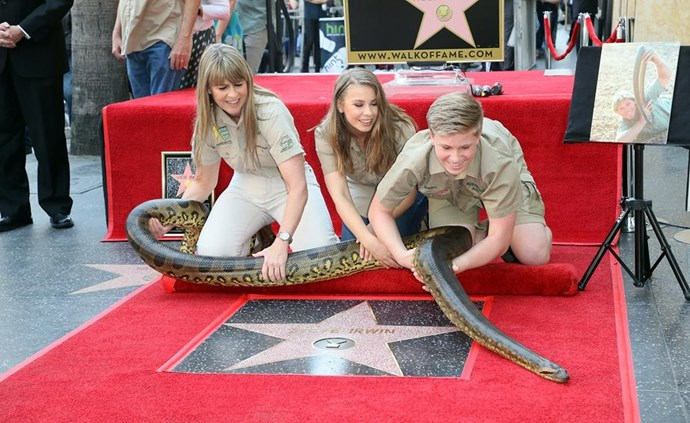 In April Steve Irwin received a Hollywood Walk of Fame