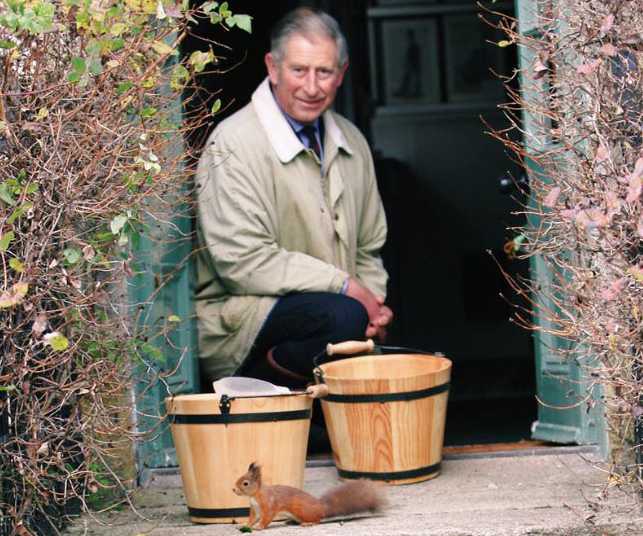 Prince Charles on the step of Clarence House, pictured with a rare red squirrel.