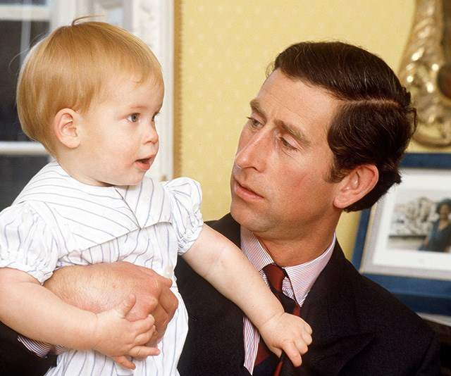 Meanwhile Prince Harry wasn't quite as rough with Dad Prince Charles! *(Image: Getty Images)*