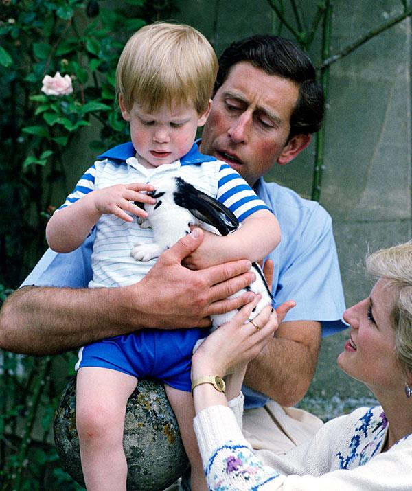 "**Fluffy love:** Prince Harry, Prince Charles and Princess Diana [with the family bunny rabbit](https://www.nowtolove.com.au/royals/british-royal-family/royal-pets-the-posh-pooches-that-keep-this-regal-family-company-19768|target=""_blank"") at their Highgrove Home estate in 1986. *(Image: Getty)*"