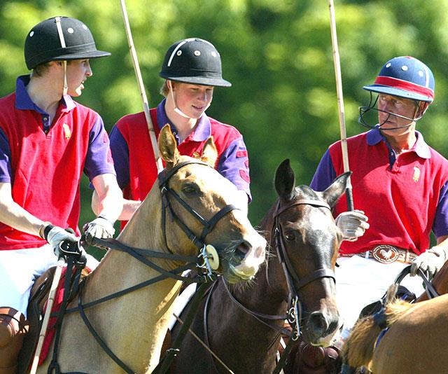 "**Horsing around:** Prince Charles has instilled his [love of polo](https://www.nowtolove.com.au/royals/british-royal-family/prince-george-princess-charlotte-polo-49103|target=""_blank"") to his boys. *(Image: Getty)*"