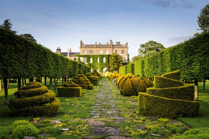 The Prince was advised to take out these yews but he honoured their longevity and instead had each one individually toplarised. *(Image: Jason Ingram)*