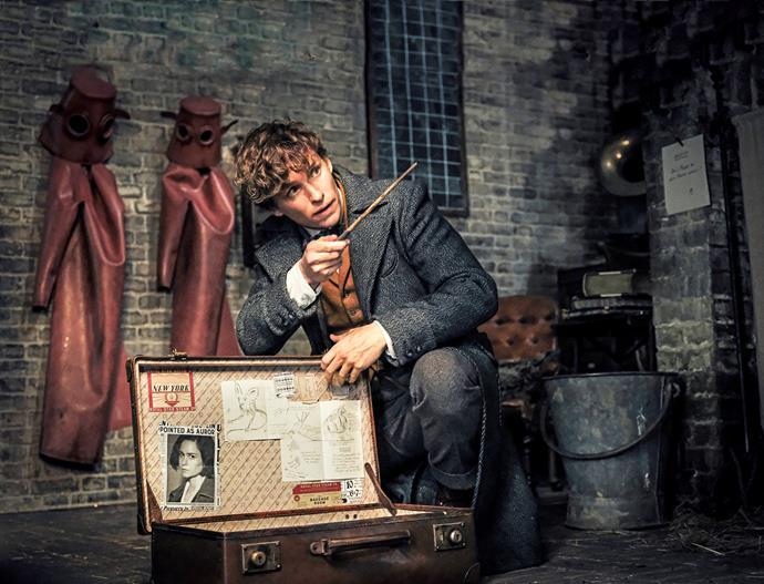 Eddie returns to *Fantastic Beasts* as Newt Scamander.