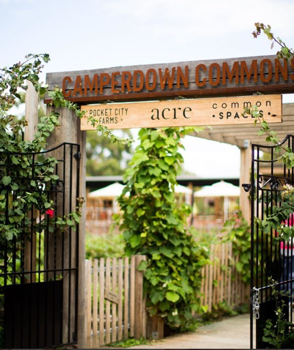 Acre gets much of its fresh supplies from the neighbouring Pocket City Farm. *(Image: Acre Eatery)*