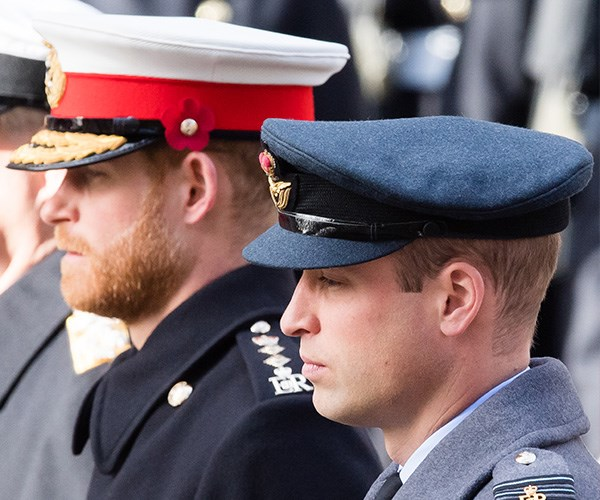 """William and Harry are determined to be as involved as they can."" *(Image: Getty Images)*"