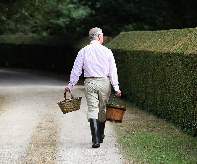 Off he goes! Charles is known for being the outdoorsy type. *(Image: Getty - Images are part of a set to mark His Royal Highness's 70th birthday.)*