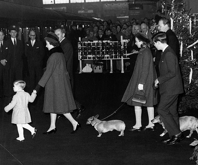 Years later with her own children (and corgis!), The Queen spread the Christmas cheer. Here she is in 1962 with Prince Andrew holding her hand, Princess Anne and the Prince of Wales heading off from King's Cross station bound for Sandringham.