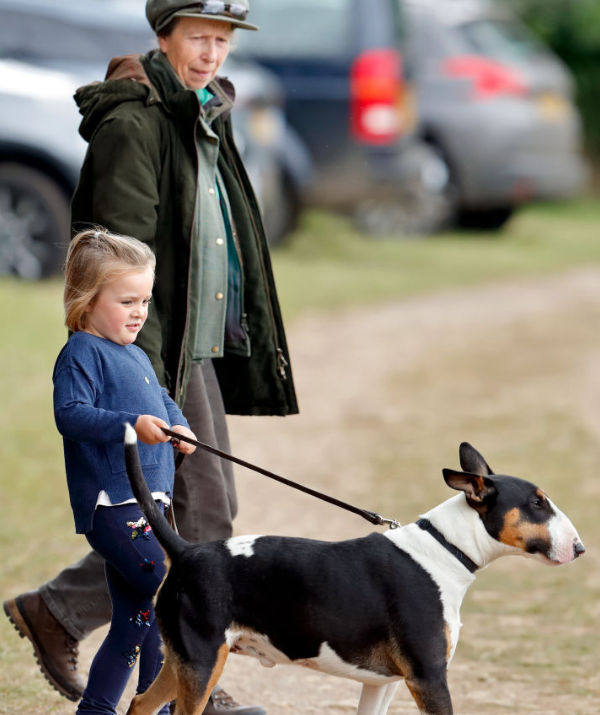 Princess Anne leads by example, encouraging granddaughter Mia Tindall to take her bull terrier dog for a walk. *Image: Getty*