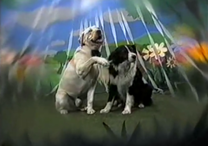 **37) BOUNCER'S WEDDING DREAM (YES, REALLY)** <br><br> In 1991, Bouncer the dog drifted off to sleep and happily dreamt of putting on a bow tie to marry Rosie, the dog next door.  <br><br> Easily one of *Neighbours*' most surreal moments.