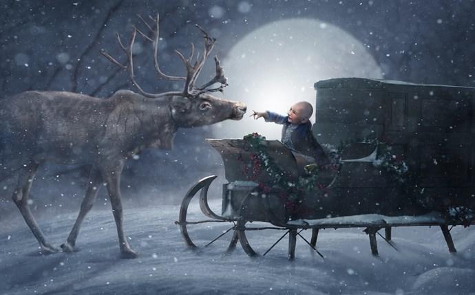 Winter Wonderland, edited by Ben Shirk. *(Image: Supplied)*