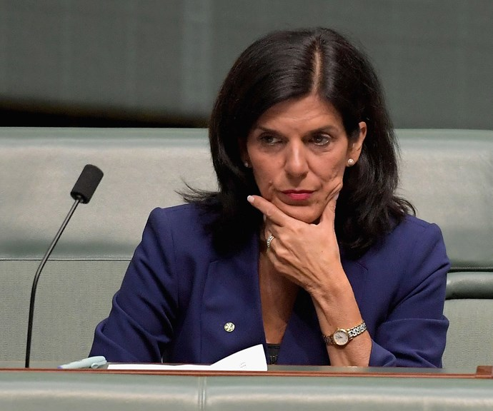 Julia says people aligned with Liberal power broker Michael Kroger started a vicious campaign against her. *(Image: Getty Images)*