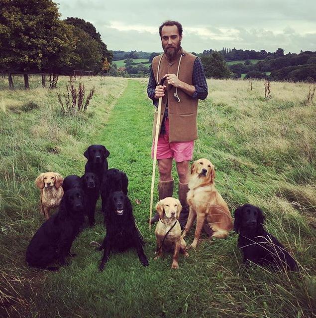 Dogs for days! *(Image: Instagram /  @jmidy)*