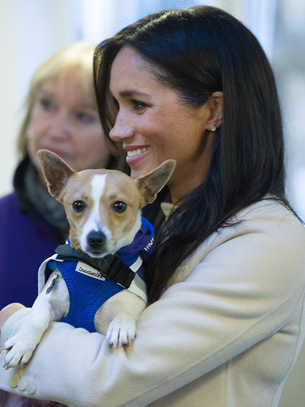 Duchess Meghan would have loved to bring Minnie home, but the Sussex home is set to get very crowded soon! *(Image: Getty Images)*