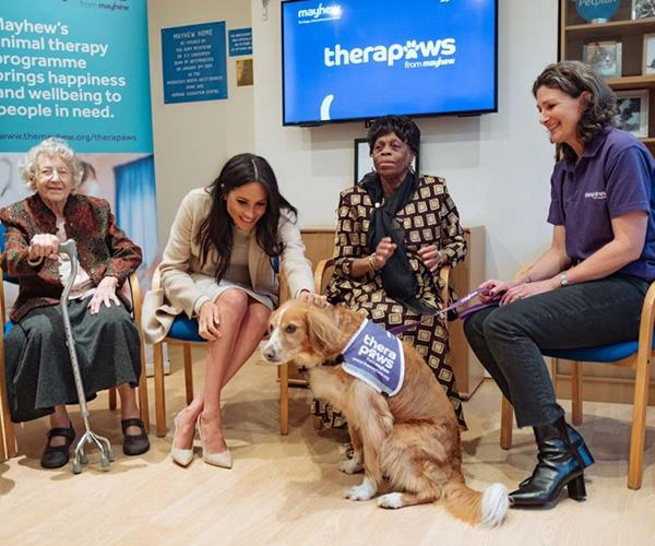 The dog-loving duchess had the opportunity to meet some four-legged friends. *(Image: Instagram @kensingtonroyal)*