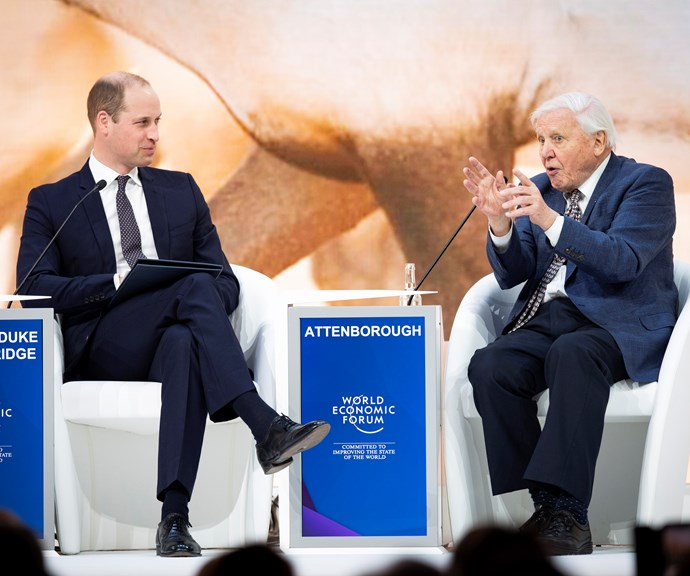 Prince William and David Attenborough chat at the Davos Forum. *(Image: Getty)*