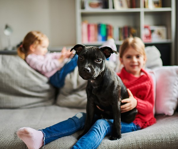 Children need to be taught to be appropriate and gentle when interacting with pets. *(Image: Getty Images)*