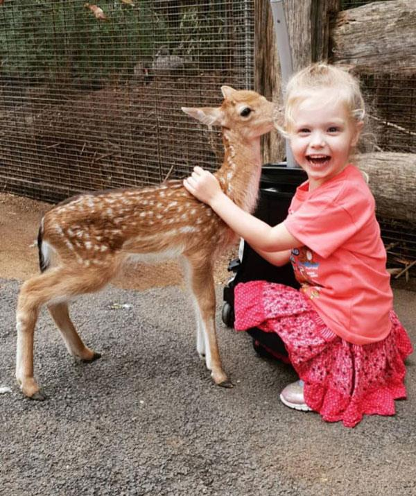 The look of pure joy when a young girl meets a baby deer at Featherdale Wildlife Park.  *(Image: Facebook)*