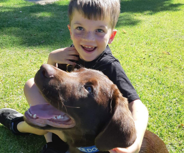 Ben getting to know a Labrador pup similar to the one he'll be getting shortly. *Image: Supplied.*