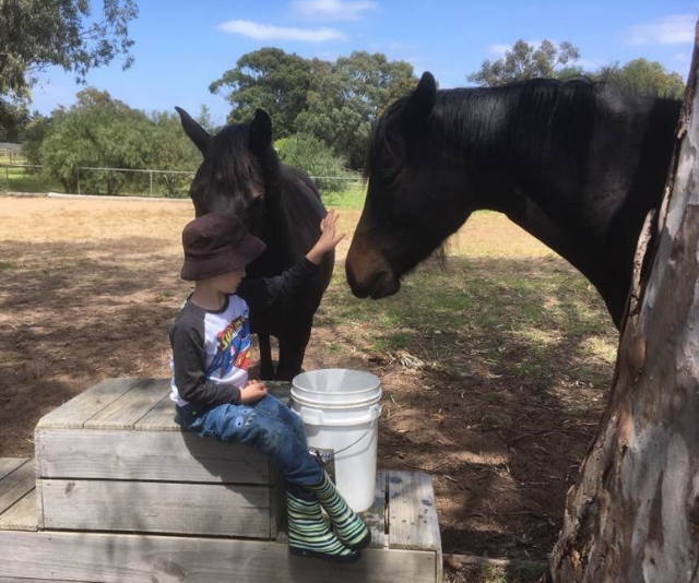 Ben participating in equine therapy. *Image: Supplied.*