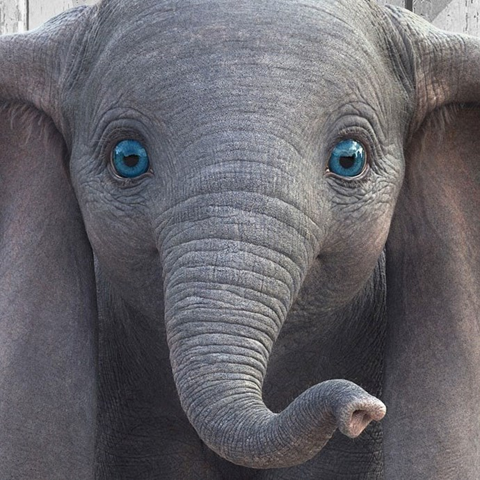 **Dumbo** *(in cinemas March 28)* A young elephant - with ears so big he can fly - stops being laughed at when it's realised he can help save a struggling circus. But the success will come at a cost.   *(Image: Disney)*