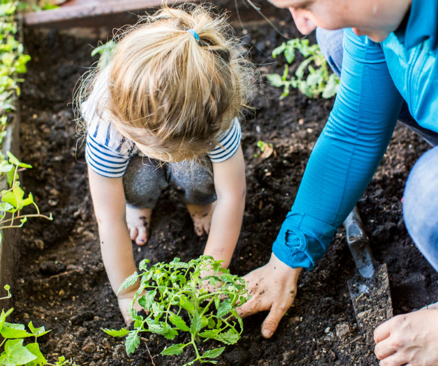**Plant a veggie garden:** From researching the right plants for your garden, to sourcing and digging it out, planting a veggie garden in your yard is not only good, cheap fun, it's a pretty delicious too! *Image: Getty.*