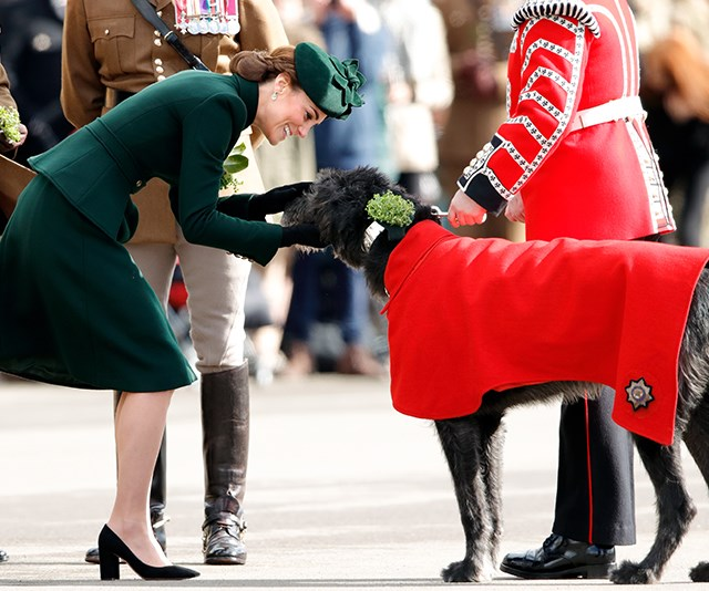 Too cute! Kate met an adorable pup named Conmael during the event. *(Image: Getty)*