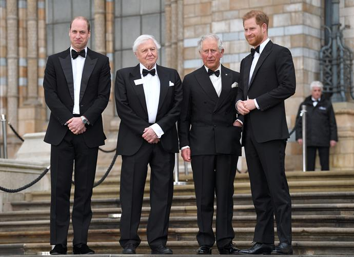 Princes Harry, William and Charles attended the premiere of Sir David Attenborough's new Netflix documentary. *(Image: Getty)*