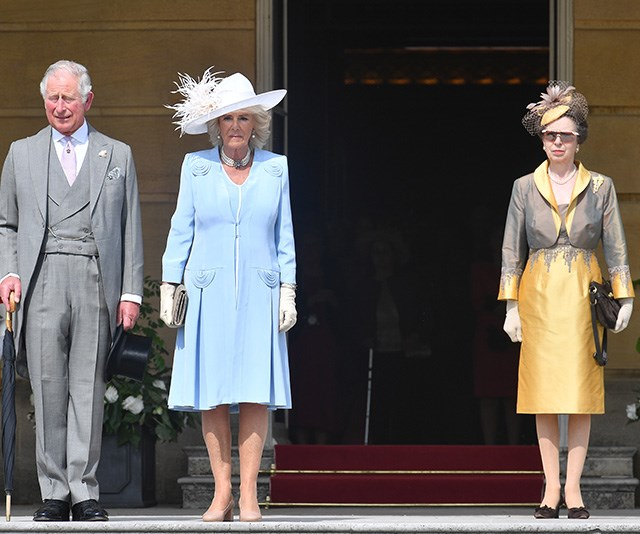 A royal feud has been simmering between Charles and Anne for 49 years. *(Image: Getty)*