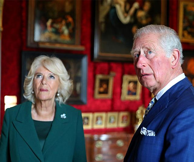 Camilla reportedly tries to undermine Anne. *(Image: Getty)*