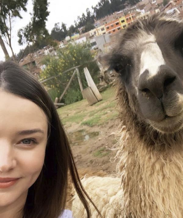 Make like Miranda Kerr and make llama selfies your next #vacaygoal.