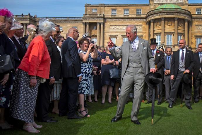 Prince Charles at Buckingham Palace.