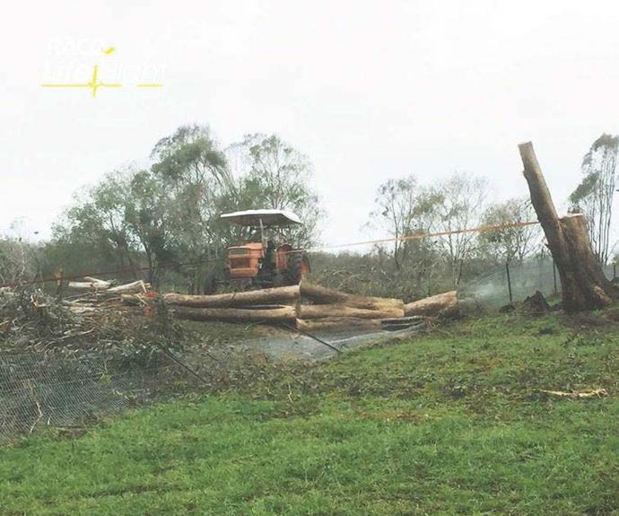 """Toppling the huge tree afterwards. PICTURE CREDIT: [ABC](https://www.abc.net.au/news/2019-03-25/mum-tells-of-horror-after-finding-son-crushed-by-fallen-tree/10937070