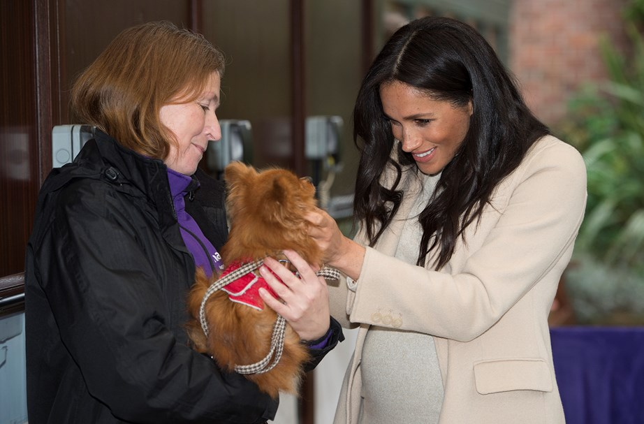 Meghan visiting animal charity The Mayhew earlier this year. *(Image: Getty)*