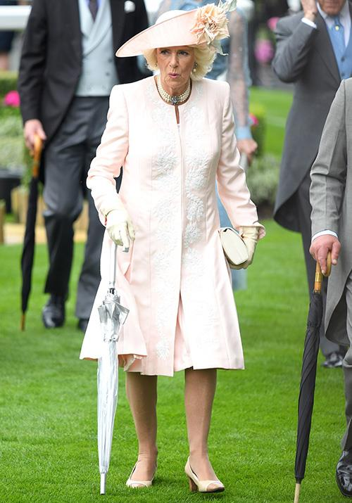 Camilla, Duchess of Cornwall, lit up the grey day in her light pink look.