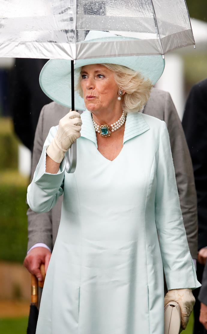 It's not often we see Camilla twin looks with other royals!