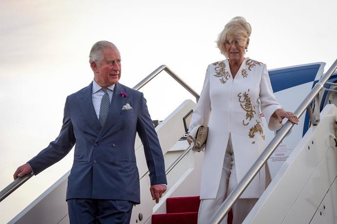 High flyers! Charles and Camilla's travel costs over the past year trumped all other royal transport expenses.