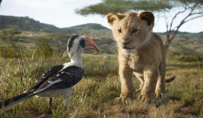 A young Simba and Zazu.
