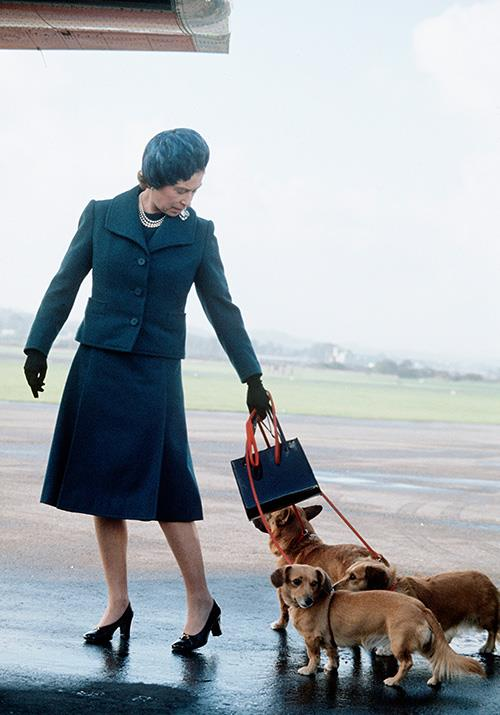 And how iconic is this picture of the Queen, who took her army of corgis with her as she jetted off to Balmoral from Aberdeen Airport?