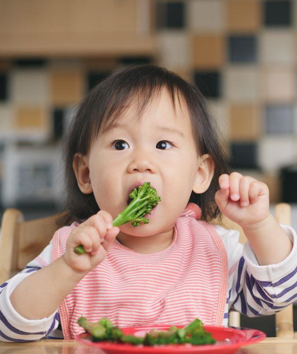 Does your child happily eat their vegies or is dinner time a battlefield?