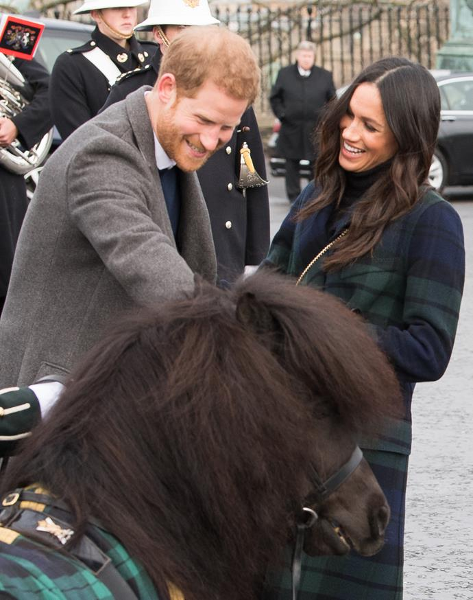 Cruachan even tried to take a bite out of Prince Harry back in 2018!