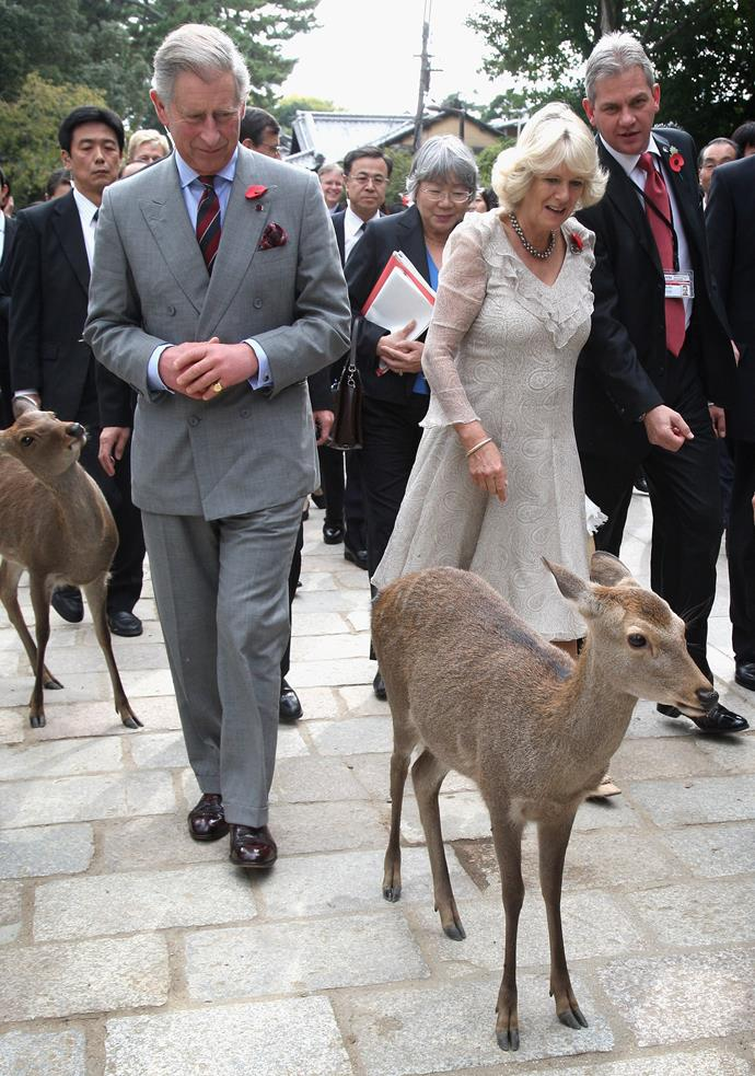 Prince Charles visited Japan in 2008, where he was joined by his wife Duchess Camilla... and some adorable local deer!