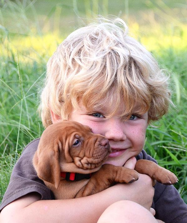 Pets are proven to bring children emotional and physical benefits.