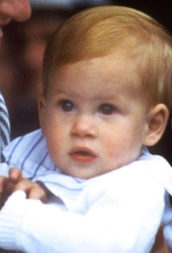 Harry's doe-eyed gene has definitely been passed down!