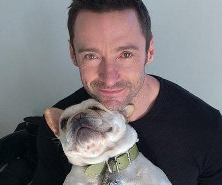 Did you know that Hugh Jackman's dogs are called Dali and Allegra? Such awesome, unusual dog names!
