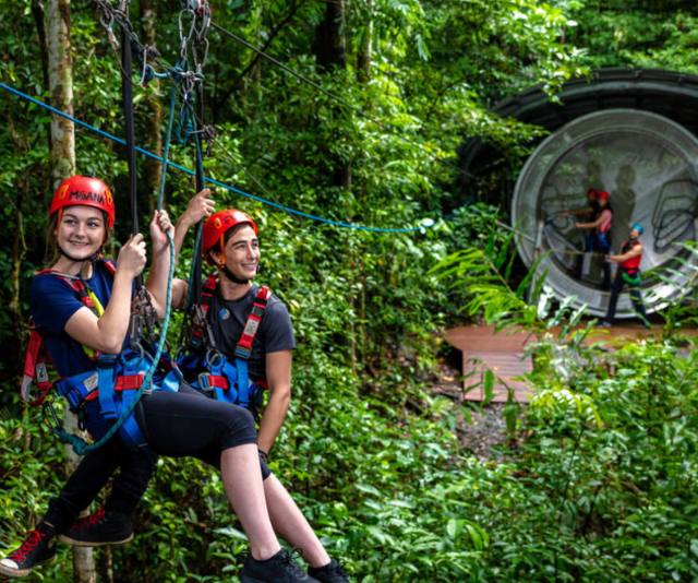 **Cape Tribulation Zipline Tour:** What better way to see the beautiful, ancient Daintree rainforest than from above?! Set on a private reserve are the award winning tours Jungle Surfing and Jungle Adventures Night Walk. By day, you can take part in a guided zipline tour high amongst the jungle canopy. By night, armed with a torch, you'll take to one of the rainforest's natural walking trails. Another experience for the family memory books!