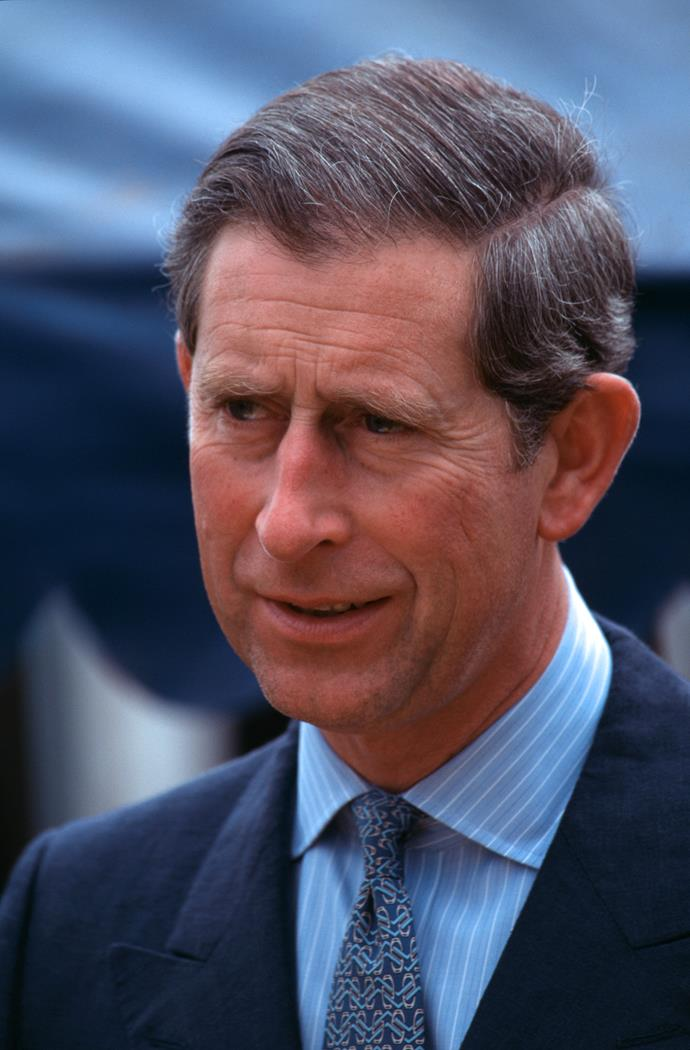 The authors say Diana had compromising photos of Charles.