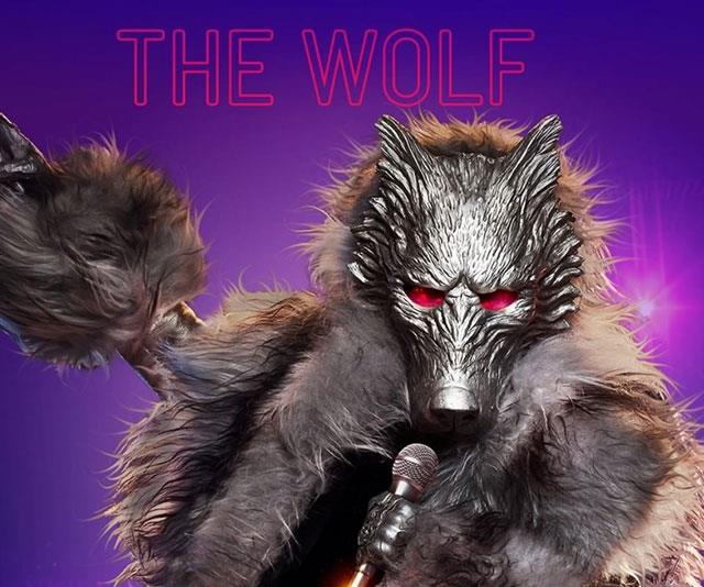 ***The Costume:***Who is behind the Wolf mask?