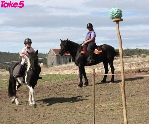 I love learning new horse riding skills.